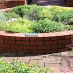 Hawken House Thyme Garden
